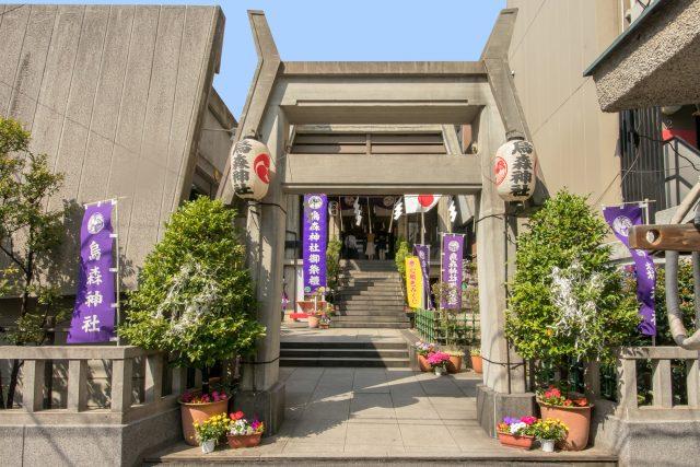 おすすめの神社とは?関東の神社を参拝した体験をまとめてみました!