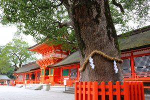 九州のパワースポット神社はどこ?おすすめの神社とそのご利益を紹介!